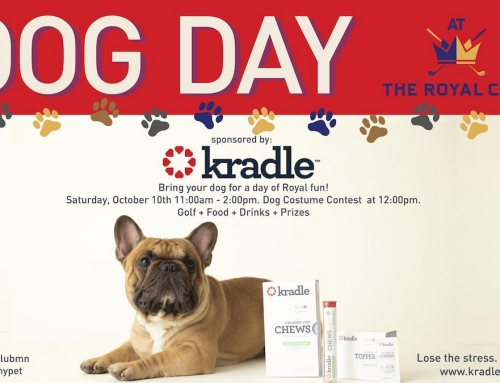Dog Day at The Royal Club – Saturday October 10th