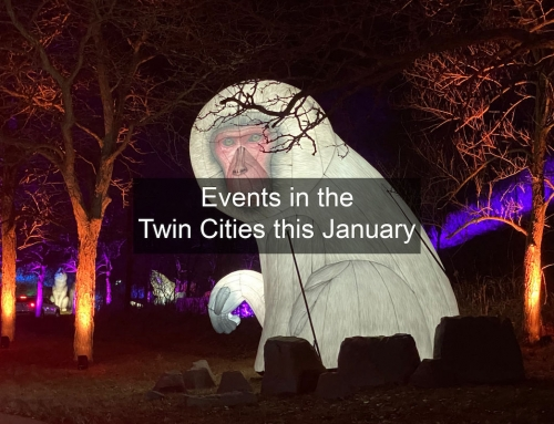 Events in the Twin Cities this January 2021